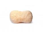 wash-sponge.png